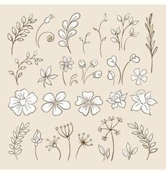 doodle elements for design flowers buds leaves vector image