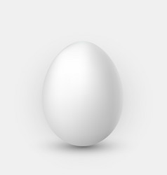 Realistic white egg with shadow on white vector