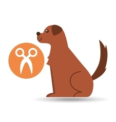 Veterinary clinic concept gromming vector
