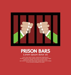 Prison Bars Graphic vector image vector image