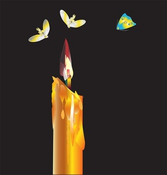 fly around a candle vector image vector image