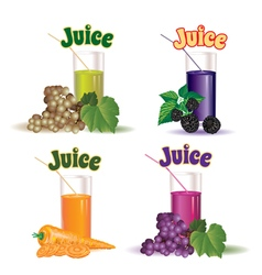 glasses for juice grapes carrot blackberry vector image vector image