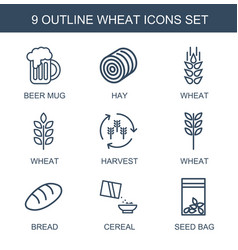 9 wheat icons vector