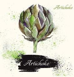 Artichoke in watercolor technique vector