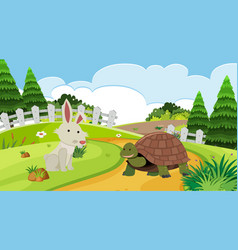 Background scene with rabbit and tortoise vector