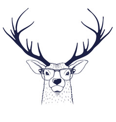 deer in glasses vector image