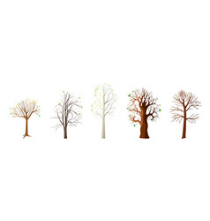 Flat collection with spring trees vector