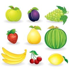 Ripe fruits set vector