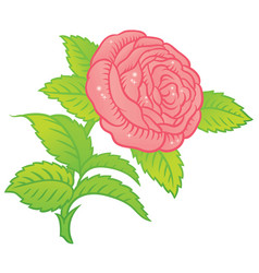 rose in classic retro style vector image