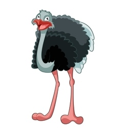 Happy Cartoon Ostrich vector image