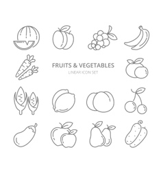 Fruits and vegetables linear icons set vector image