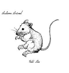 Autumn animal hand drawn field mice isolated vector
