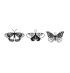 butterflies glyph set vector image