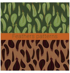 Feathers patterns vector