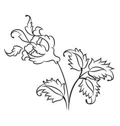 iznik style rose drawing vector image