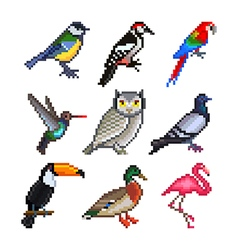 Pixel birds for games icons set vector image vector image