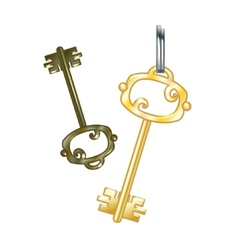 Gold key eps10 vector image vector image