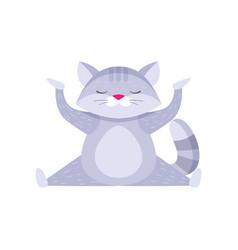 Cute raccoon doing cross split and meditating vector