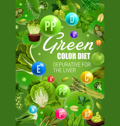 Green fruits and vegetables detox diet vegan food vector
