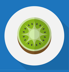 Of fruits symbol on kiwi flat vector