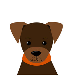 portrait of little puppy flat style vector image