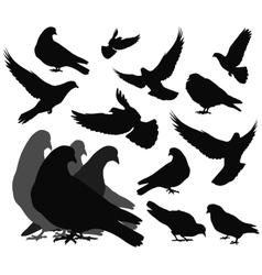 doves vector image vector image