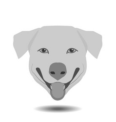 dog head floating witn shadow on white background vector image