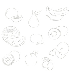 Fruits sketchy icons vector