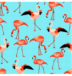 Seamless pattern with flamingo tropical bright vector