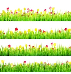 Spring meadow with white EPS 10 vector image vector image