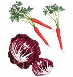 mix vegies vector image vector image