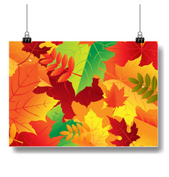 autumn banner isolated vector image