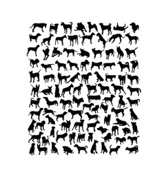 Dog activity silhouettes vector