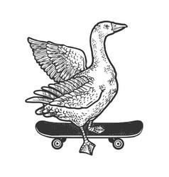 goose on skateboard sketch vector image