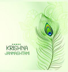 Peacock feather design for shree krishna vector