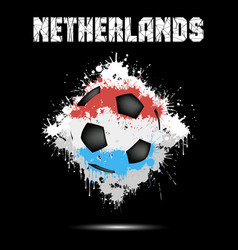 soccer ball in the color of netherlands vector image