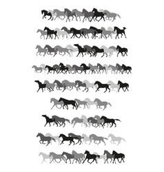 set of horses silhouettes in black and grey vector image