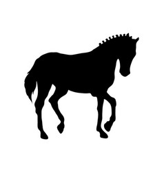 running horse black silhouette vector image