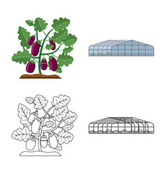 Design of greenhouse and plant symbol set vector