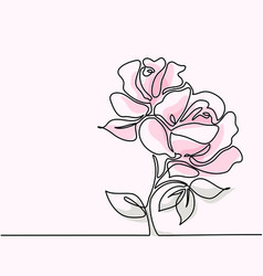Drawing of beautiful pink rose flower vector