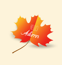 Happy autumn design with orange maple leaf on vector