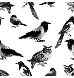 seamless bckground various wild birds vector image