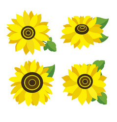 Set of colored sunflowers vector