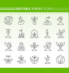 sprout simple black line icons set vector image