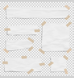 white paper ripped pieces different size with vector image