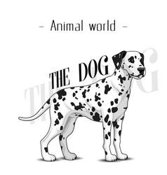 Animal world the dog dalmatian background i vector
