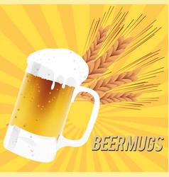 Beer mugs glass of beer barley background i vector