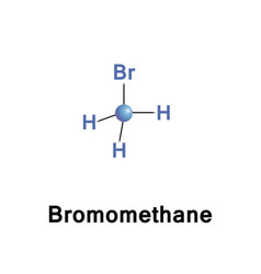Bromomethane methyl bromide vector