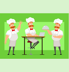 cartoon flat fat chef cook man character vector image