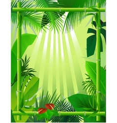 beautiful forest background with bamboo frame vector image vector image